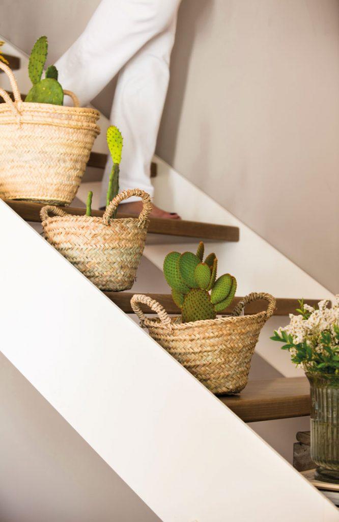 salon sencillo con plantas