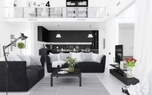 sala blanca y negra