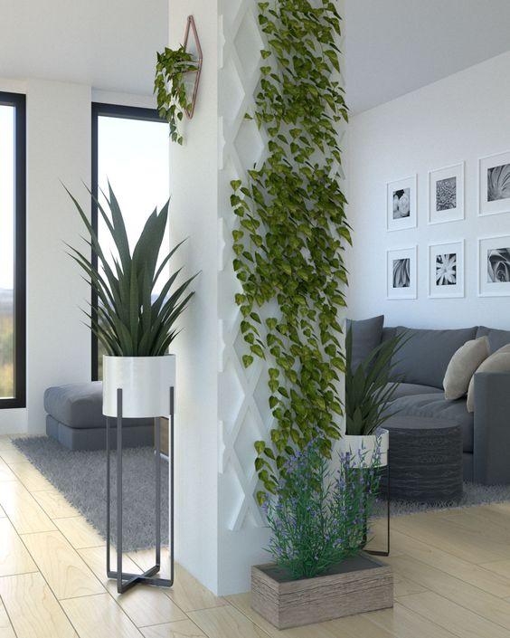 El verde natural siempre presente decorando columnas cuadradas