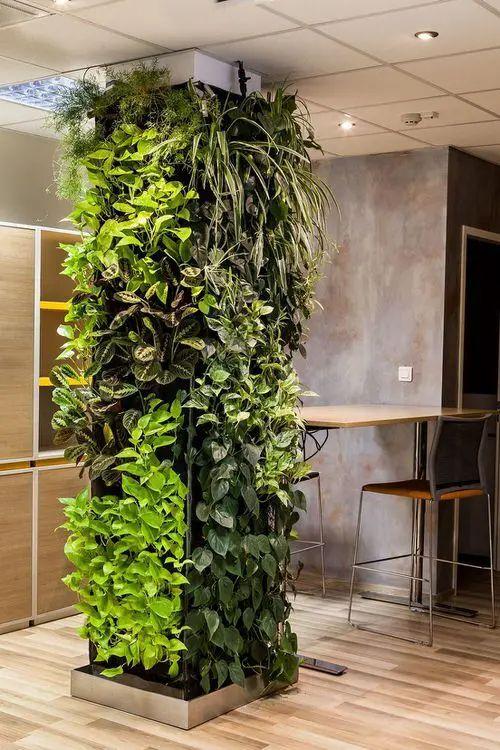 Un jardín vertical en la columna de hormigón