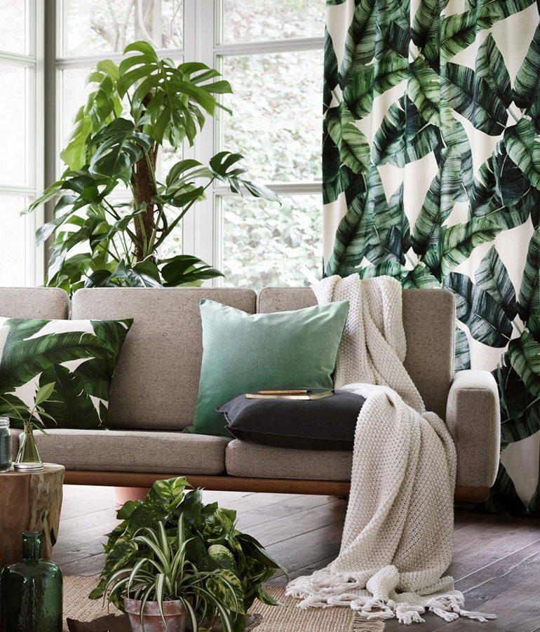 Plantas y vida, básicas para salones tropicales