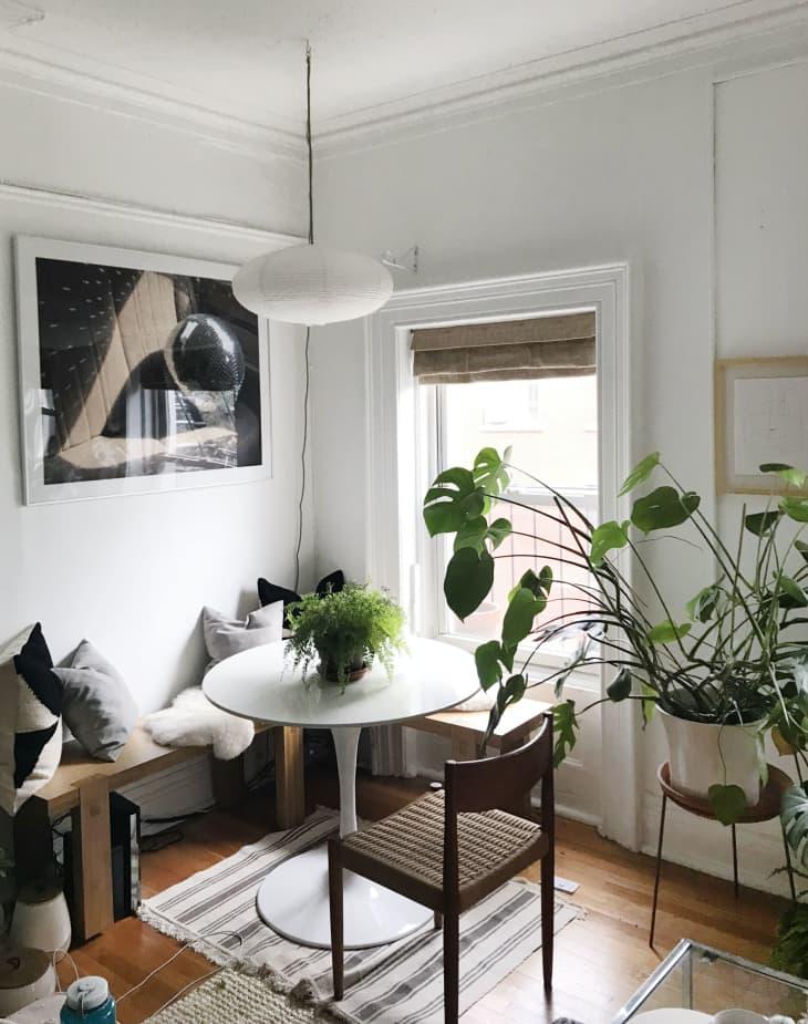 decorar un salón comedor de 20 metros cuadrados con ventanales