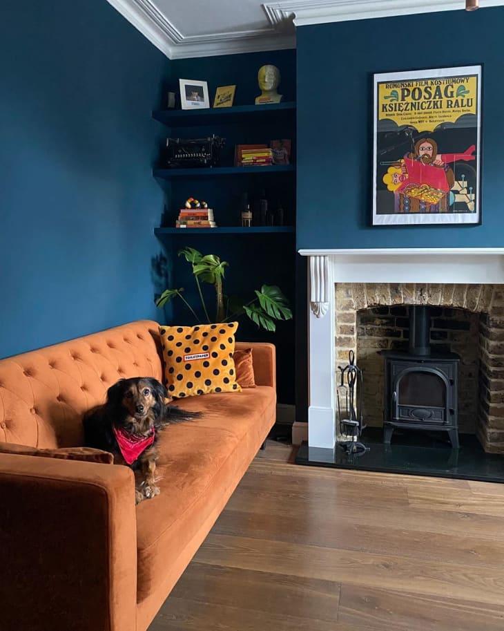 Alto contraste entre la pared y el sofá naranja