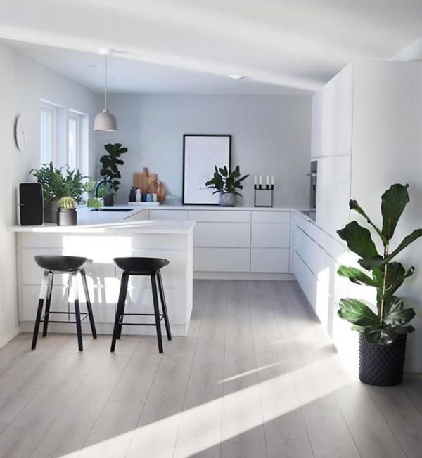 cocinas pequeñas blancas con plantas