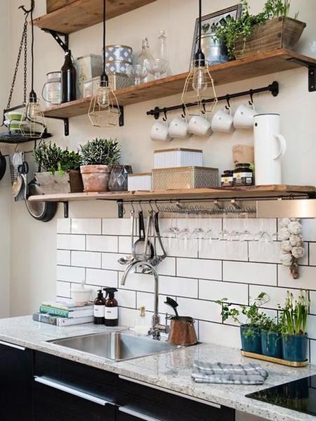 cocinas pequeñas con plantas en los estantes