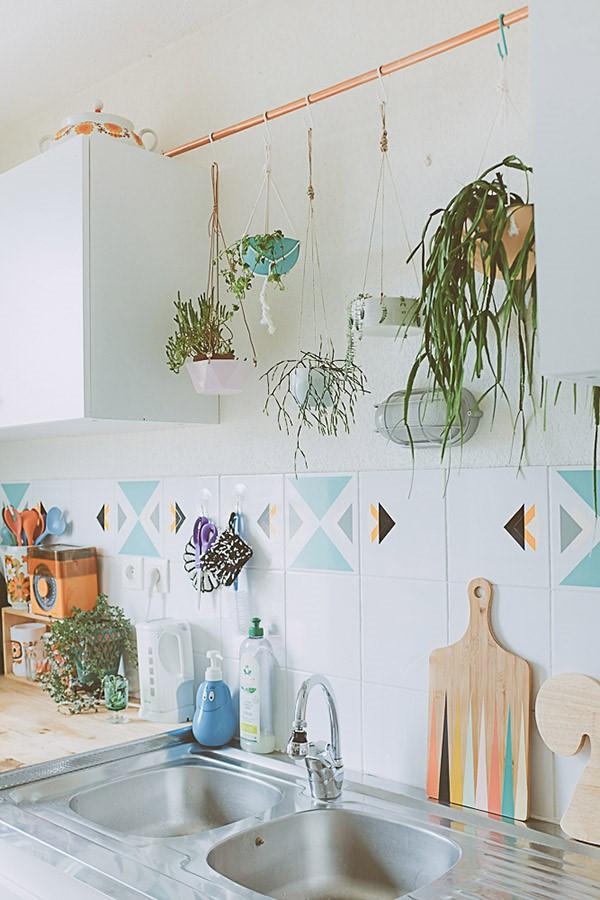 cocinas pequeñas con plantas entre estantes