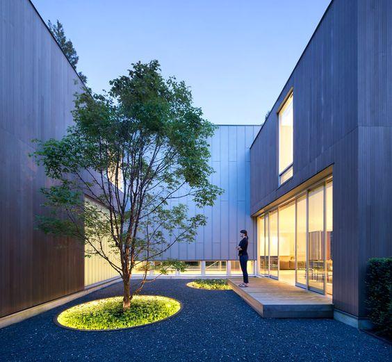 vegetacion para Decoración de patios pequeños minimalistas