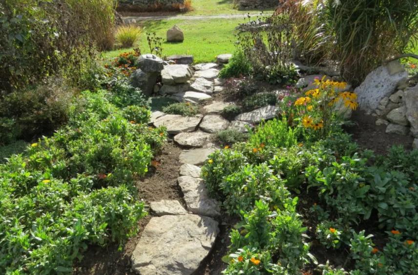 Jardín rústico con sendero de piedra