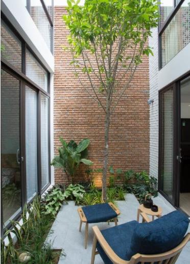 Patios modernos y pequeños con arbusto