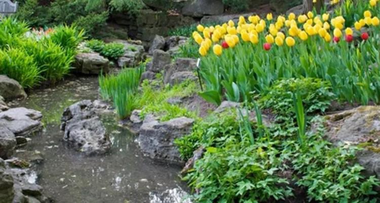 decorar patios pequeños sin césped con riachuelo y flores