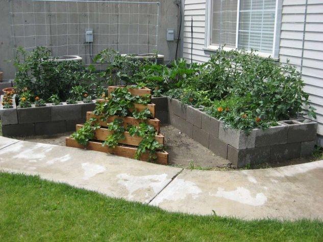 Plantas sobre bloques de cemento Flotando