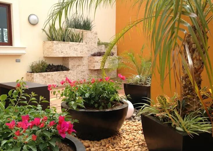 Piedras blancas y grandes en vez de césped en un jardin pequeño