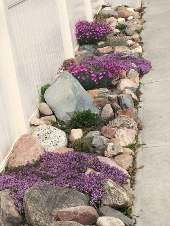 Bellas flores recubriendo las piedras de un jardín pequeño