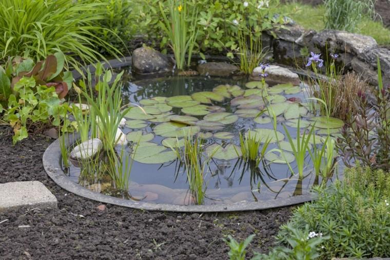 Un pequeño estanque en el jardín