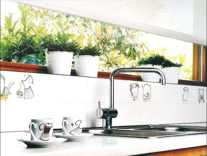 Plantas aromáticas y comestibles para cocinas modernas