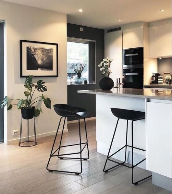 Plantas minimalistas para cocinas modernas