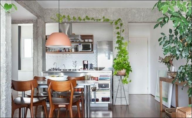 Plantas enredaderas para cocinas modernas
