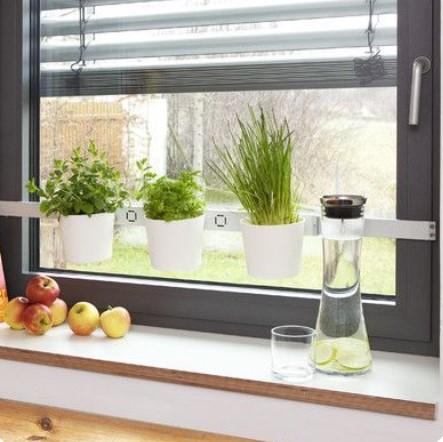 Decoración con plantas en ventana de cocina