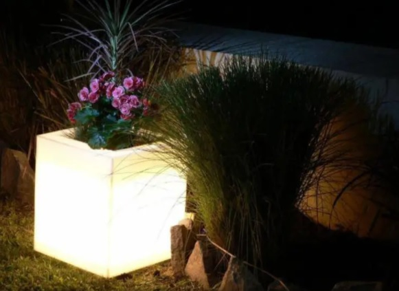patio con luces y maceta