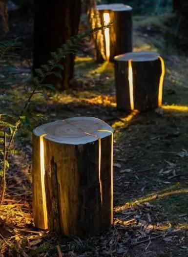 patio con luces y troncos