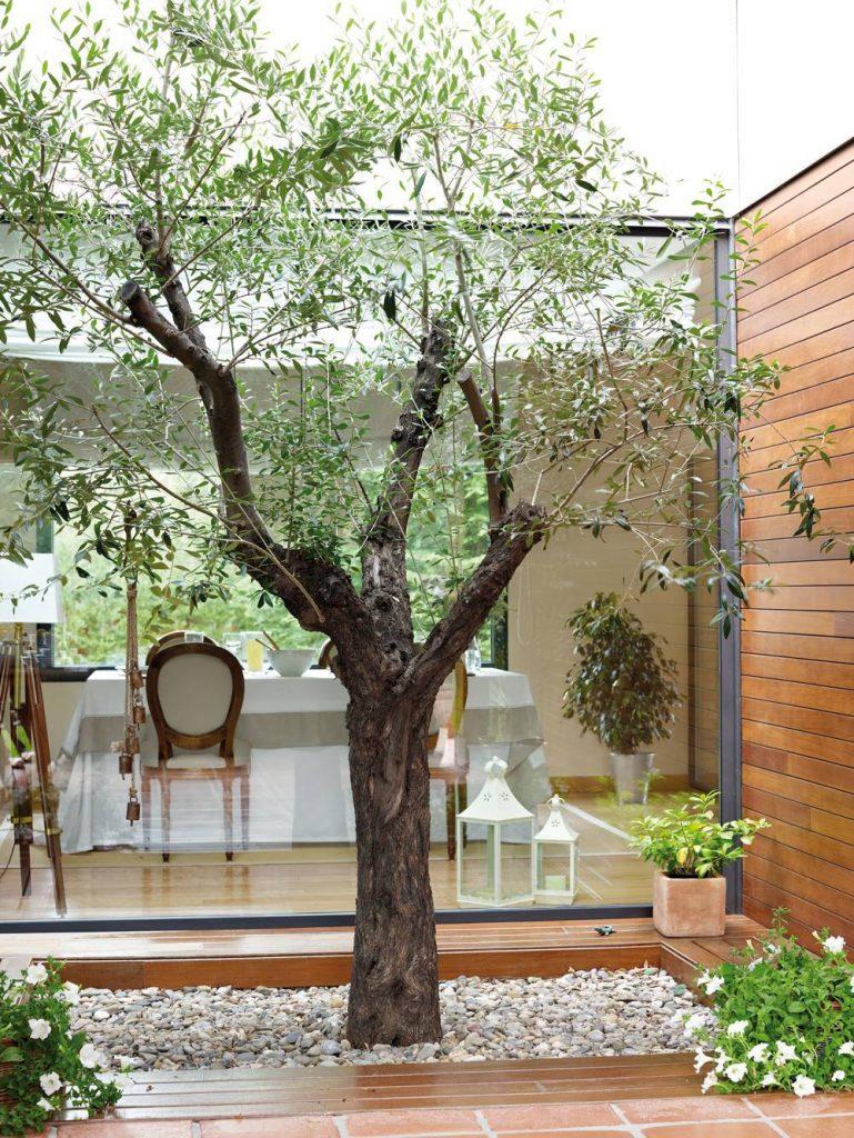 patio pequeño con estilo minimalista