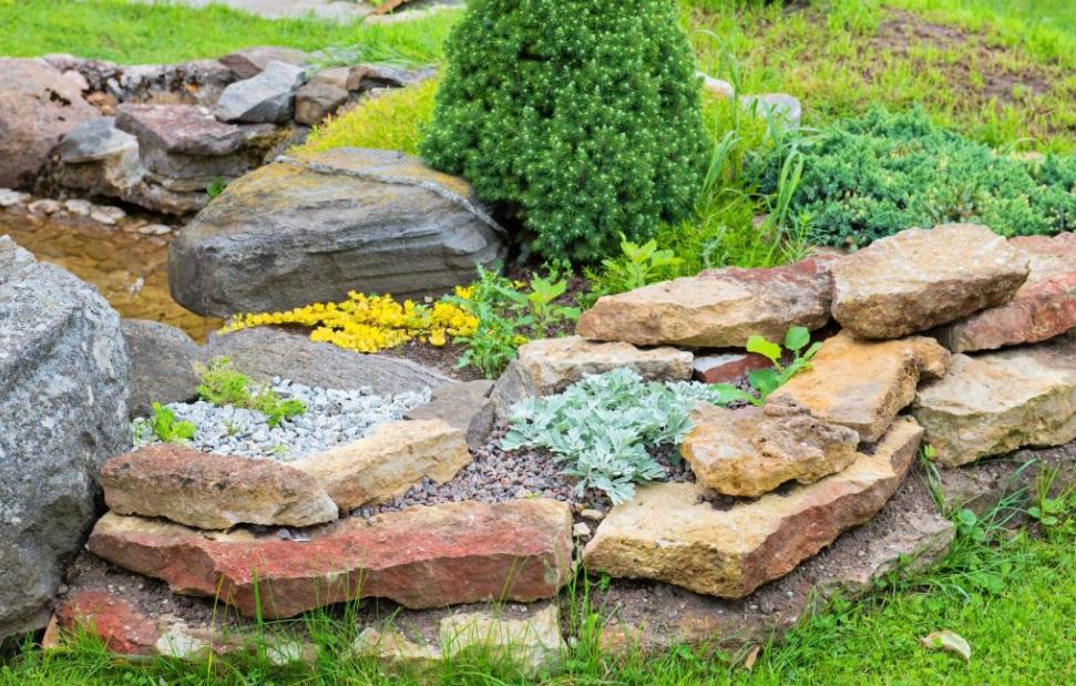 pequeño jardín alpino con piedras