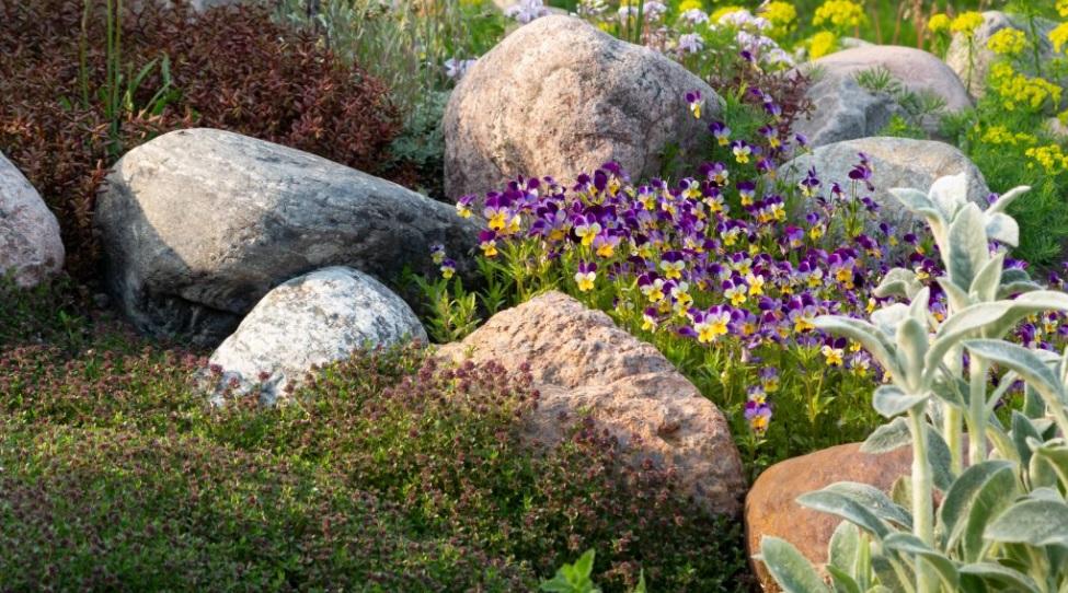 Pequeño jardín moderno con piedras y una cama de flores