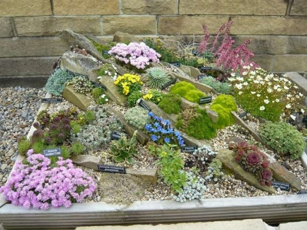 jardin pequeño y moderno con piedras de colores