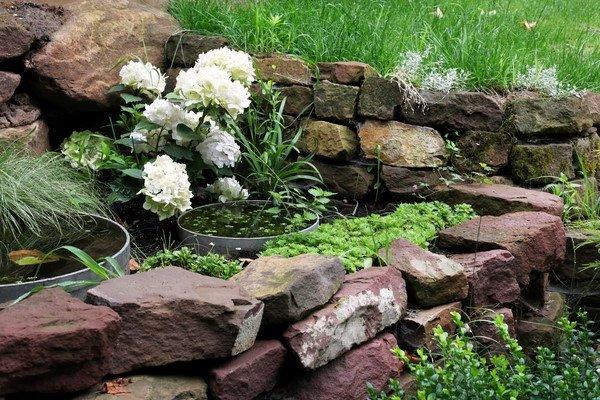 jardin pequeño y moderno con Canteros rústicos con piedras