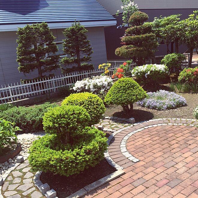 decoración de jardines con mulch bonitos
