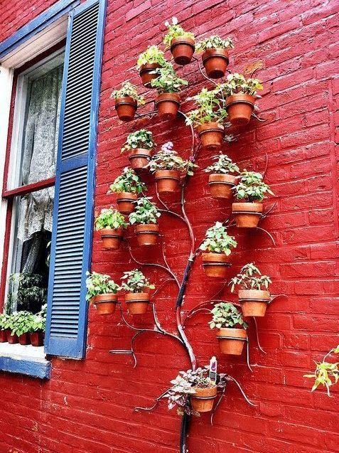 Pared exterior con plantas y metal