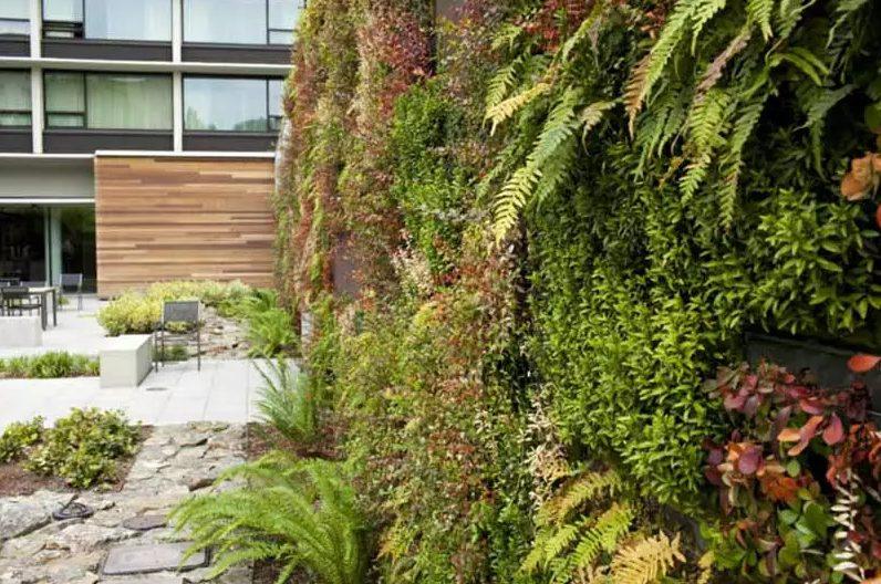Jardín pequeño con plantas verticales