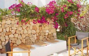 decorar con plantas paredes exteriores