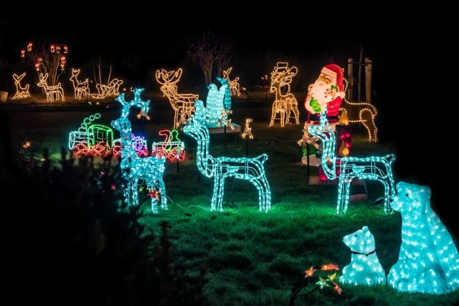 decora tu jardin en navidad con Luces, Trineos y Renos