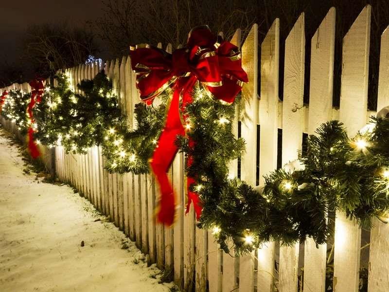 Lazos de Regalo en tu Jardín por navidad