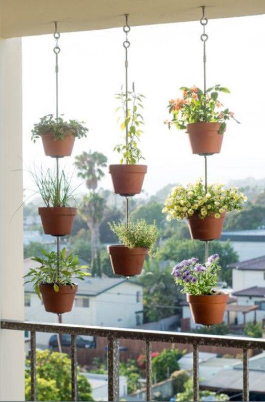 Aprovechando el techo de tu balcón con plantas