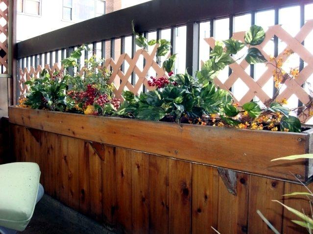 Plantas con estilo rústico para el balcón