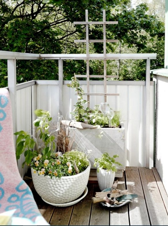 Que no falte la luz y plantas a tu balcón