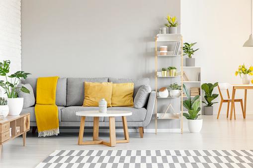 sofá gris y cojines amarillos lisos